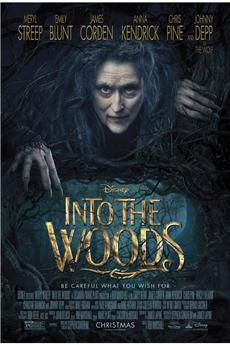 Into the Woods (2014) 1080P download