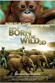 Born to Be Wild (2011) download