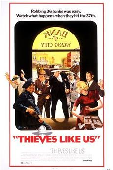 Thieves Like Us (1974) 1080p download