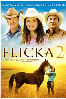 Flicka 2 (2010) 1080p download
