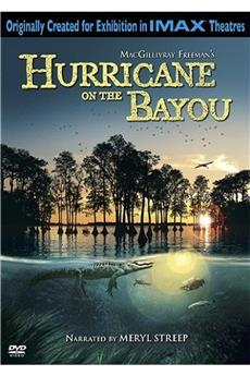 Hurricane on the Bayou (2006) download