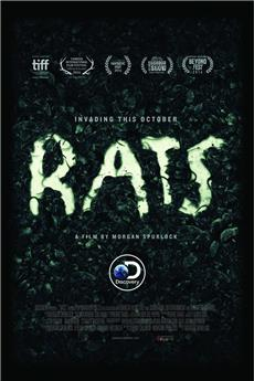 Rats (2016) download