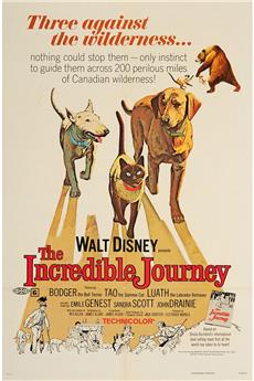 The Incredible Journey (1963) download