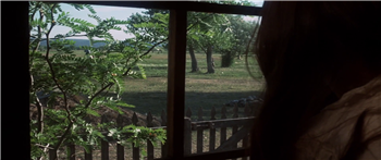 The Hired Hand (1971) 1080p download