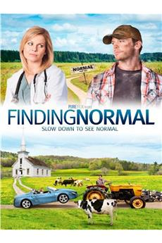 Finding Normal (2013) 1080p download