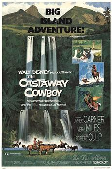 The Castaway Cowboy (1974) 1080p download
