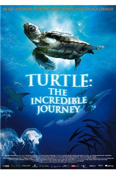 Turtle: The Incredible Journey (2009) download