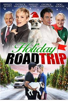 Holiday Road Trip (2013) 1080p download