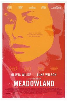 Meadowland (2015) 1080p download