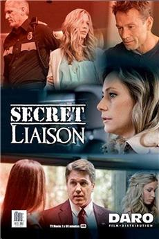 Secret Liaison (2013) 1080p download
