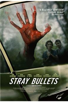 Stray Bullets (2017) 1080p download