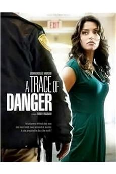 A Trace of Danger (2010) 1080p download