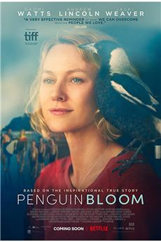 Penguin Bloom (2021) 1080p download